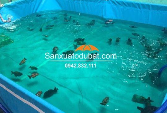 Hồ nuôi cá Koi bằng bạt